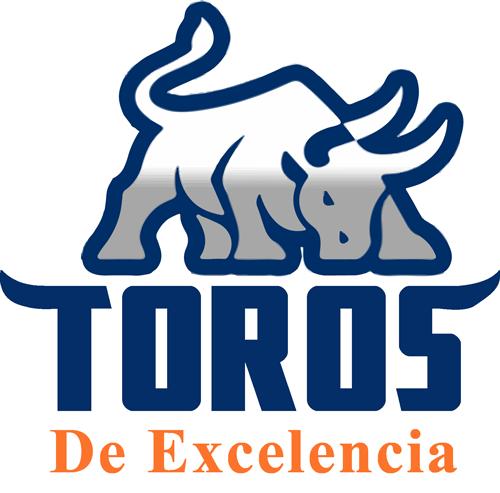 toros_excelencia_logo_2019_color
